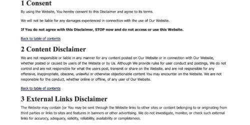 privacyterms.io disclaimer example of policy